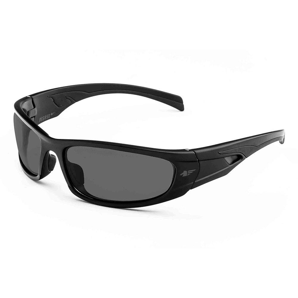 Gafas de sol Pegaso Fotocrom C2s