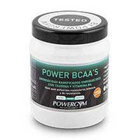 Powergym Power BCAA´S 450 g Orange